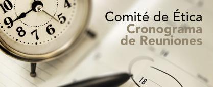 Cronograma Comité de Ética