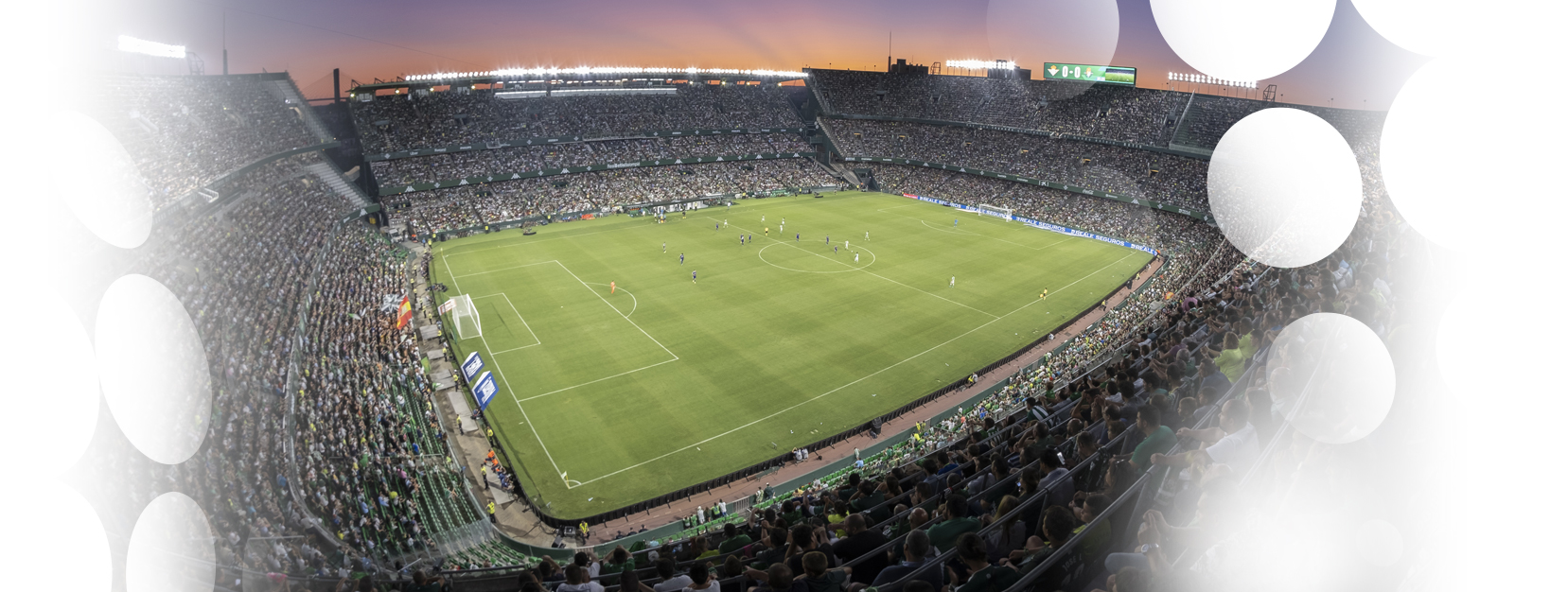 Master in Management: Sports Business Real Betis